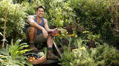 Grass is greener: Celebrity garden designer and plant expert Jamie Durie. Photo: Tamara McCannon
