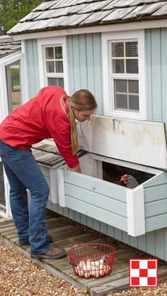 smart cute chicken coop. easy access for eggs and cleaning