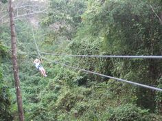 Zip Line (Tree top canopy tour) Jamacia