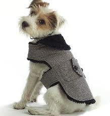 patrones ropa perros