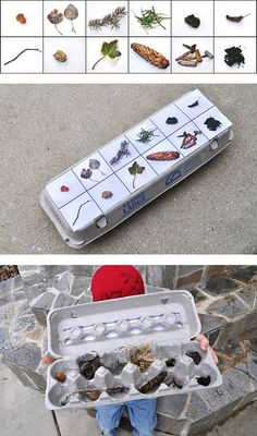 egg carton nature scavenger hunt