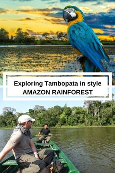 Exploring the Amazon Rainforest in Tambopata, Peru, on a private luxury jungle tour with Rainforest Expeditions, and staying in a remote but 5* Amazon Villa 4 hours from Puerto Maldonado.