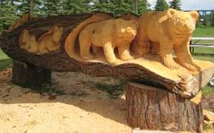 Tree Carving of Bears