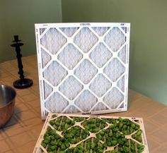 Drying Hops at Home   The Mad Fermentationist - Homebrewing Blog
