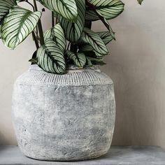 📍 House Doctor Rustik Potte by KitchenOne #concrete #cupioconcrete #concretedesign #microcement #design #polishedconcrete…