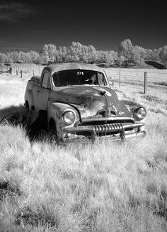 FJ Holden ute   Flickr - Photo Sharing A couple of old utes were in rusty retirement under the pepper trees on the farm.