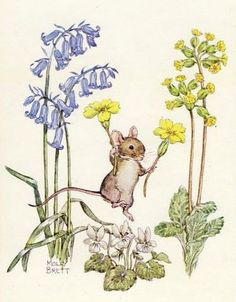 Molly Brett post card, vintage postcard, Spring is here Mouse Pk Molly Brett, flowers, woodlands postcard by sharonfostervintage on Etsy Art And Illustration, Animal Painter, Pet Mice, Cute Mouse, Cute Art, Book Art, Artwork, Images, Sketches