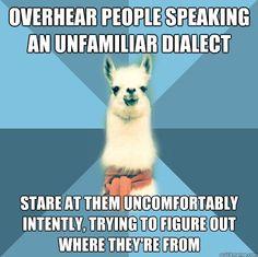 linguist llama, unfamiliar dialect