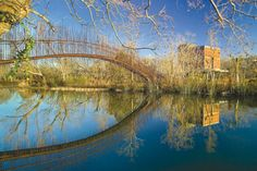 Gallery of Pedestrian Bridge / Miró Rivera Architects