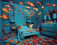 Revenge of the Goldfish, Sandy Skoglund