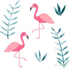Flamingo fever by Mima Illustration