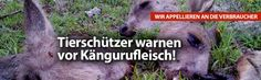 Tierschützer warnen deutschlandweit vor Konsum von Kängurufleisch. Die lange Zeit zwischen Tötung und Kühlung erhöht das Risiko der Bakterienkontamination. E. Coli und Salmonellen werden immer wieder in Kadavern nachgewiesen, welche teilweise tagelang in nicht sterilen Kühlapparaten hängen, bevor sie weiter verarbeitet werden.