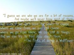 In my opinion, one of the best book quotes ever. From perks <3