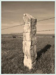 "Kansas limestone fence posts ""Land of the Post Rock"" is a distinction given to about 3 million acres in North Central Kansas"