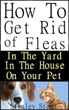 16 House Hacks to Get Rid of Fleas - | Fleas, House Hacks ...