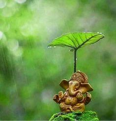 God Ganesh in the shade Ganesh Lord, Sri Ganesh, Lord Shiva, Arte Ganesha, Ganesh Idol, Shri Ganesh Images, Ganesha Pictures, Orisha, Ganesh Wallpaper