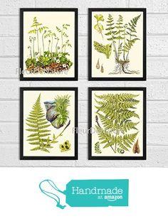 Botanical Set of 4 Prints Unframed Antique Beautiful Ferns Green Forest Nature Home Room Fern Decor Wall Art from LoveThePrint https://www.amazon.com/dp/B019FWYPU4/ref=hnd_sw_r_pi_dp_aEzoyb2KRXKAX #handmadeatamazon