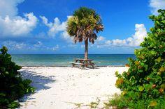 honeymoon island florida | honeymoon_island_state_park.jpg