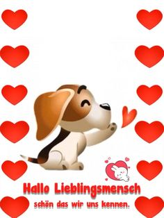 Super Funny Good Morning Pictures Love You Ideas Good Morning Gif, Good Morning Picture, Morning Pictures, Good Morning Quotes, Coeur Gif, Cute Love, Love You, Happy Birthday Video, Image Clipart