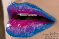 Blue Lavender & Fucsia
