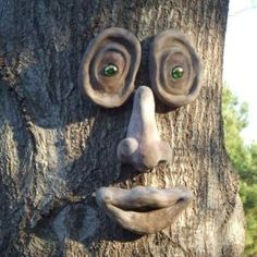 Genuine Tree Peeple - Oakley Tree Face - Color is throughout each piece and won't wear off. Can be left outdoors year-round. Install easily and harmlessly on the tree trunk with small screws or nails not included. Outdoor Walls, Outdoor Decor, Outdoor Trees, Outdoor Plants, Air Plants, Cactus Plants, Tree People, Tree Faces, Art Supply Stores