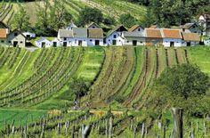 Wine cellars in Austria's Weinviertel Visit Austria, Travel Music, Heart Of Europe, Central Europe, Alps, Homeland, Country Life, Croatia, Around The Worlds