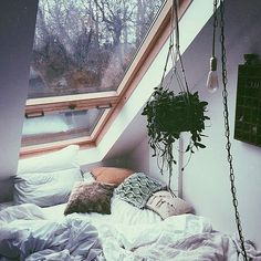 New Room Decor Bohemian Free People Ideas Dream Rooms, Dream Bedroom, Master Bedroom, Bedroom 2018, Master Suite, My New Room, My Room, Cozy Bedroom, Bedroom Ideas