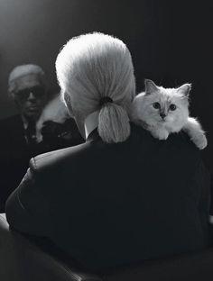 Karl Lagerfeld & Choupette <3