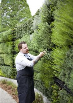 Vertikaler Kräutergarten---wow vertical herb garde