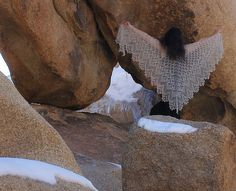 One Skein Idea: Small size of Aeolian Shawl by Elizabeth Freeman (you can also opt to make larger sizes with two or three skeins of Seraphim!) - FREE pattern from Knitty!