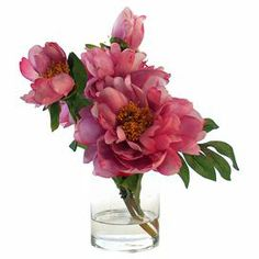 """Add a sprightly centerpiece to your desk or coffee table with this beautiful faux peony arrangement, showcasing bright fuchsia blossoms nestled in a clear glass vase.  Product: Faux floral arrangementConstruction Material: Silk, plastic, acrylic and glassColor: Fuchsia and greenFeatures: Includes faux peoniesDimensions: 14"""" H x 13"""" W x 10"""" D"""