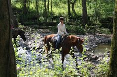 Shaker Village and the Big Red Stables in #Kentucky–– two great places to saddle, up. Try to go in the spring, when the wild flowers are in bloom.