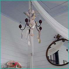 Oyster shells added to old chandelier Old Chandelier, Chandeliers, Oyster Shells, Old Doors, Tropical Decor, Beach Scenes, Beach Cottages, Oysters, Light Up