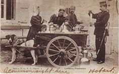 Belgium Laitieres Flamandes Milk Test Dog Cart 1904 used postcard