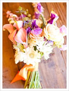Pastel Calla Lilies