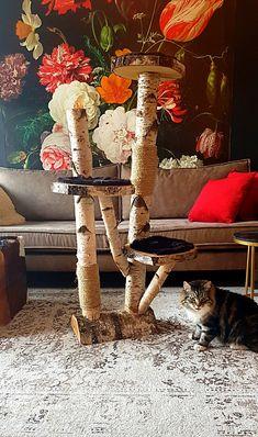 Krabpalen natuurlijk hout. www.decoratietakken.nl Cat Stuff, Cats, Painting, Gatos, Painting Art, Paintings, Cat, Kitty, Painted Canvas