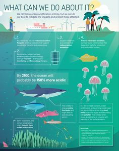 Image result for protect the ocean poster