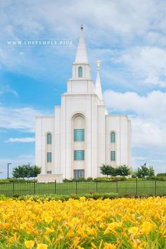 Kansas City Temple Blue and Gold Vertical - LDS Temple Pictures Lds Temple Pictures, Lds Pictures, Mormon Temples, Lds Temples, Beautiful Buildings, Beautiful Places, Beautiful Pictures, Jesus Christ Lds, Savior