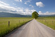 Gorgeous view of Cades Cove.