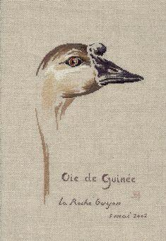 Oie de Guinée