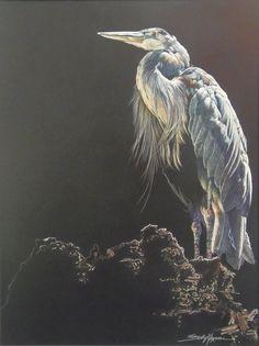 Sally Maxwell, Big Blue
