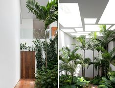 LOVE this. they built the home around large trees on the property creating small pockets of indoor gardens throughout the house.