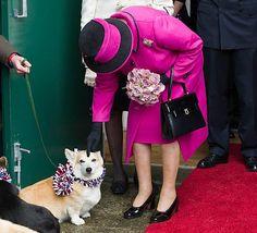 Queen pats corgi on Jubilee visit to Sherborne, Dorset #corgi