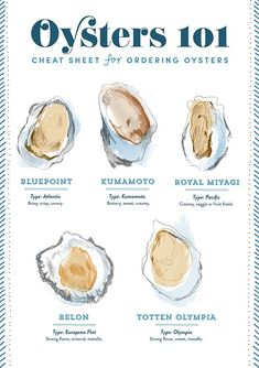 Yay my design for OKL: The perfect oyster cheat sheet! See our team's favorite places to indulge on our blog: https://www.onekingslane.com/live-love-home/restaurants-for-oysters-and-champagne/