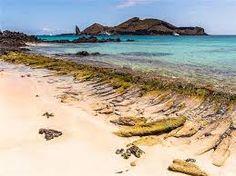 Znalezione obrazy dla zapytania galapagos islands