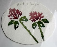 Ideas to keep nature journaling fresh - LOVE the flower project!