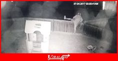 At 4am, a drug affected lady steals a slide from a …  - #Viral #Trending #Video #Funny #ViralAIO