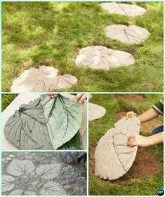 DIY Concrete Leaf Stepping Stone Instruction-DIY Big Rhubarb Leaf Garden Projects