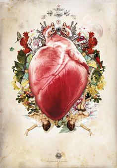 Organs - Heart by Nadful