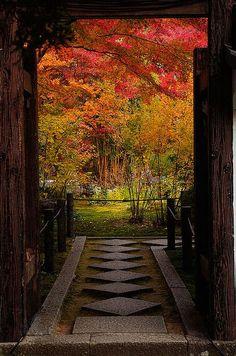 garden of a temple in the Fall (Tenjuan, a sub-temple of Nanzen-ji in the Higashiyama area of Kyoto, Japan)